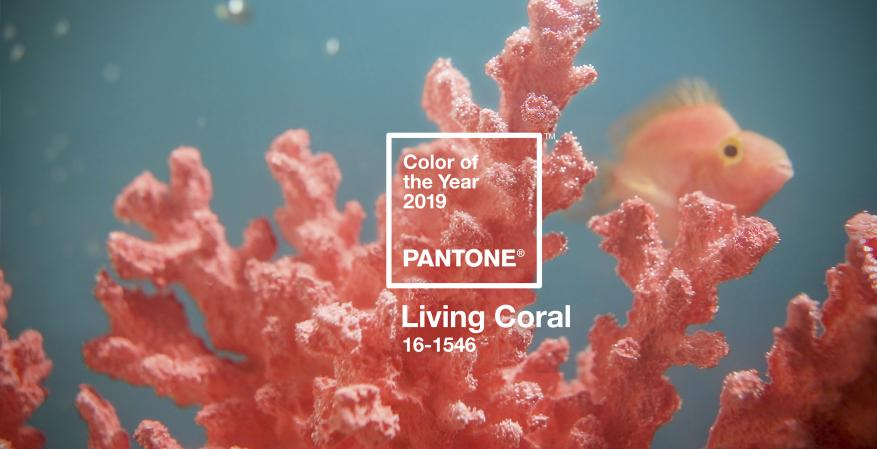 Pantone Color of the Year Living Coral