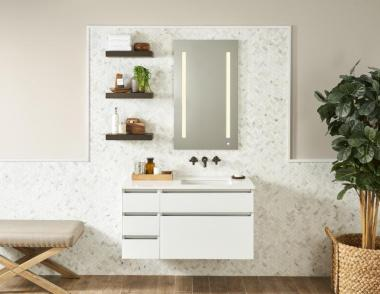 Robern AiO bathroom vanity