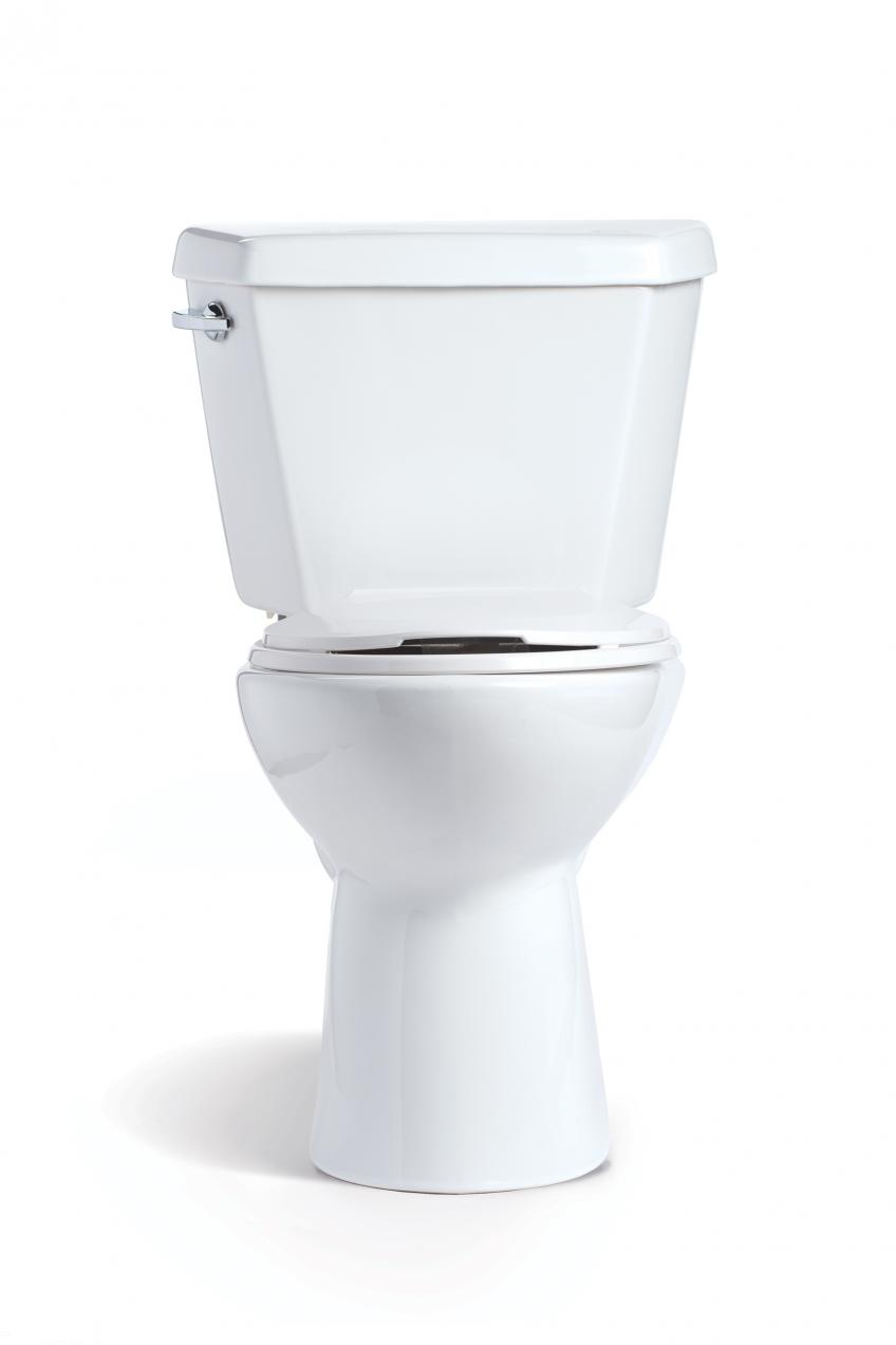 Mansfield Plumbing Denali toilet