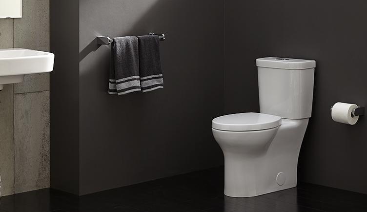 DXV lyndon collection toilet bath install