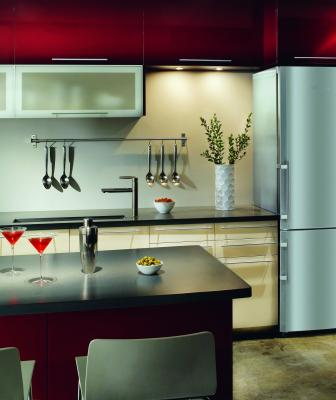 One-third of homeowners who upgrade their appliances during a remodel select appliances with high-tech features such as built-in apps and wireless controls.