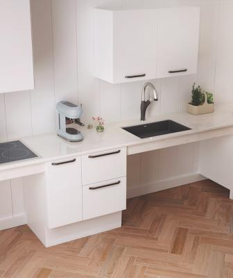 Blanco Precis Single Bowl ADA Undermount Sink