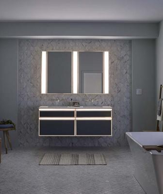 Robern Profiles lighted bath vanity
