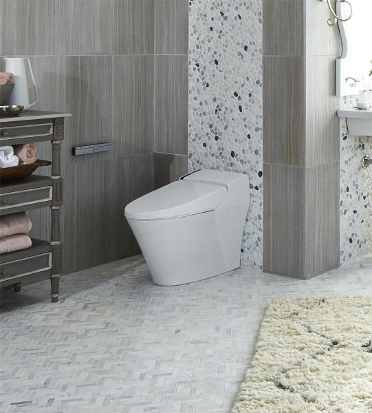 DXV SpaLet smart toilet