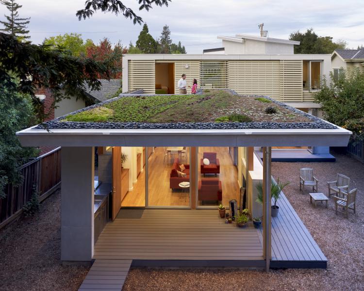 Feldman Architecture Green Roof