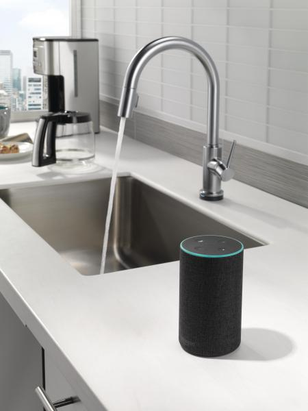 Delta voice activated faucet